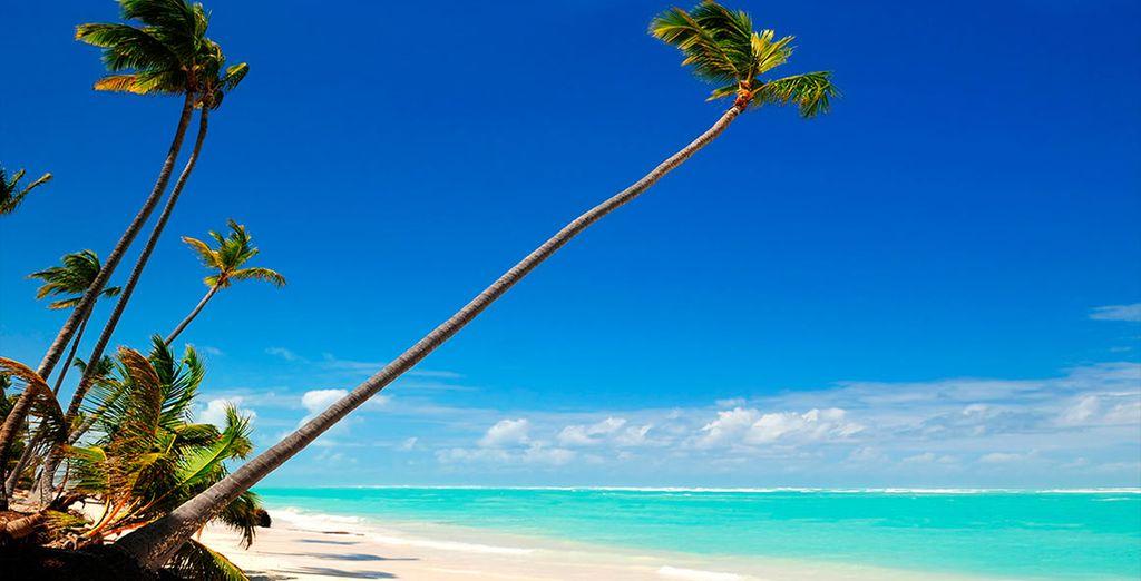 Home to a coastline of white, sandy beaches