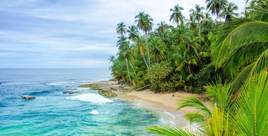The coast offers tranquil splendour