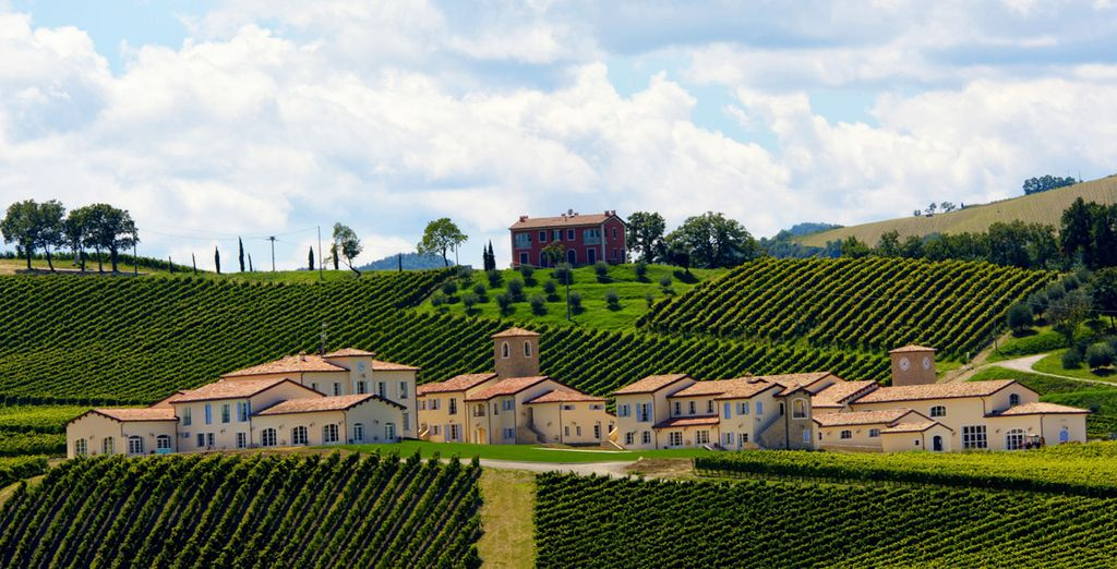 The rolling vineyards of Italy are waiting to be discovered!