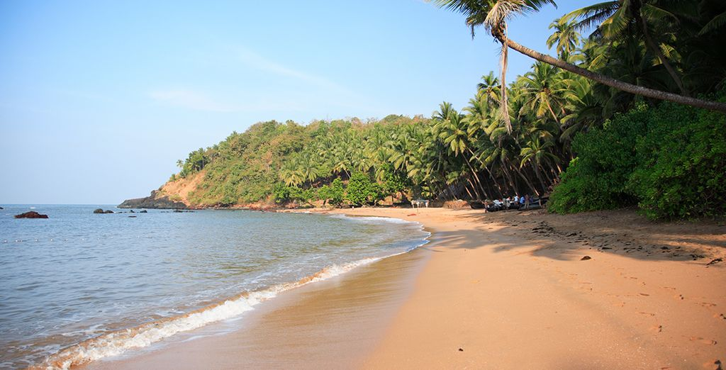 You will end with a 5 night stay in Goa