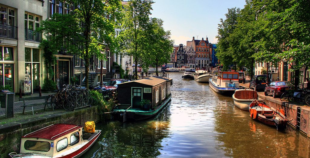 Then head out to explore Amsterdam