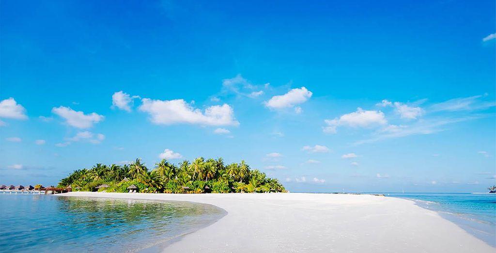 Relish the pristine, white sand beach