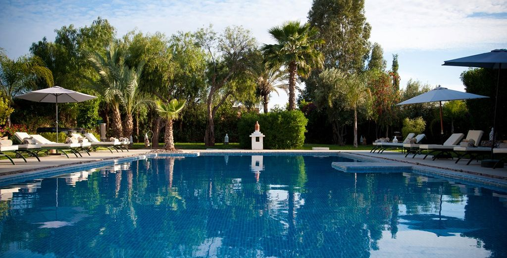Escape to an oasis in the desert