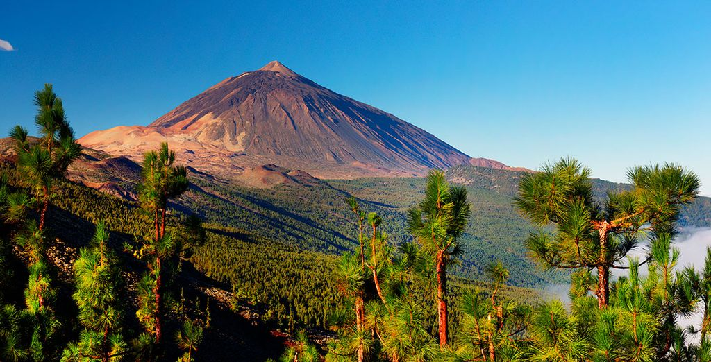 Add our car hire to explore - Mount Teide National Park is 45 minutes away