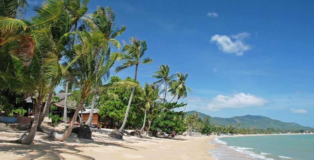With gorgeous beaches
