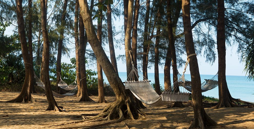 Doze on a hammock for the perfect retreat!