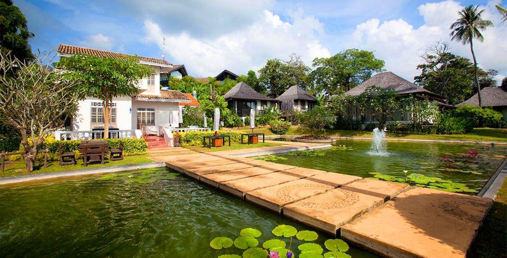 Head to this beautiful 5* Thai resort - The Vijitt Resort 5* Phuket