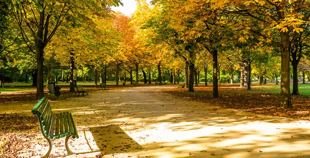 And there's always a peaceful afternoon walk through the Tiergarten to look forward to!