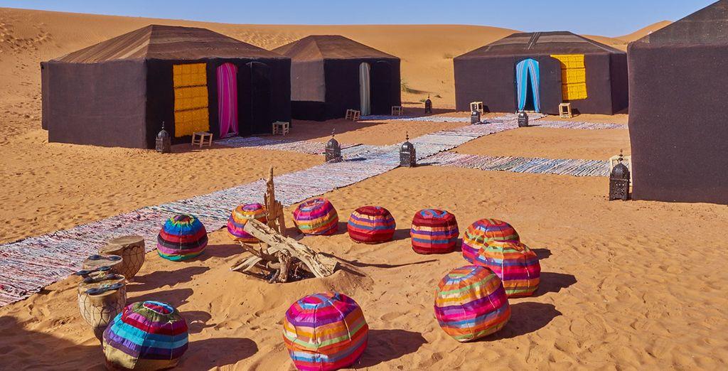 Embark on an exciting desert tour