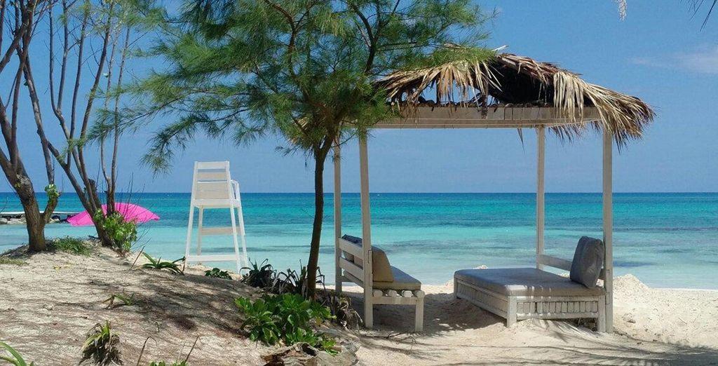 Laze in this sleepy tropical paradise