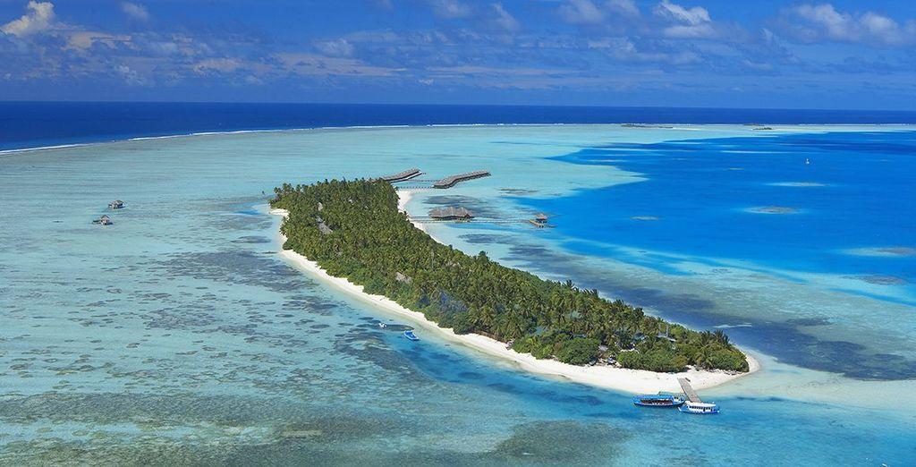On this tiny island - Medhufushi Island Resort 4* Male