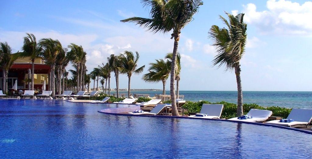 Between the vast pool ...