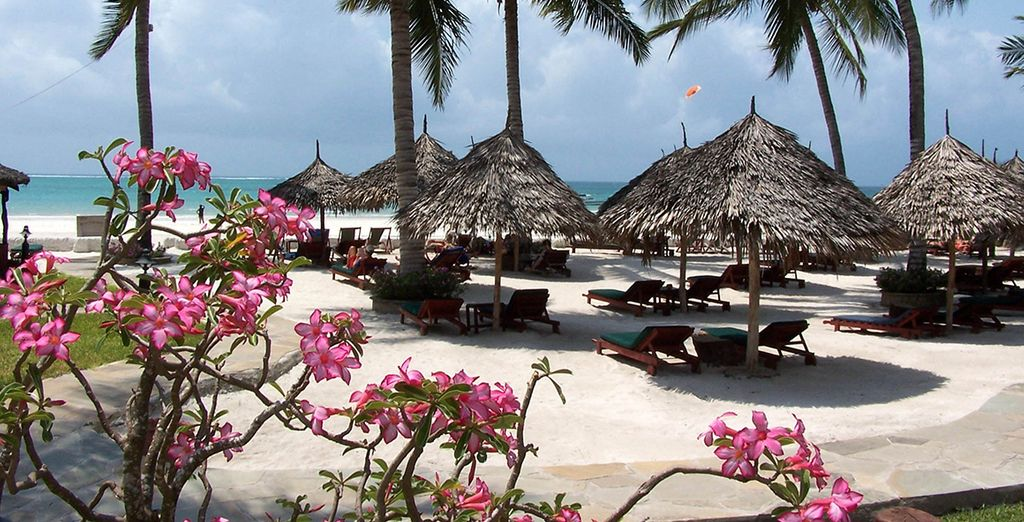 Welcome to Pinewood Beach Resort