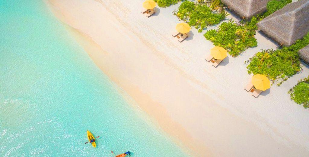 The UNESCO protected Baa Atoll is home to Dhigufaru Island Resort