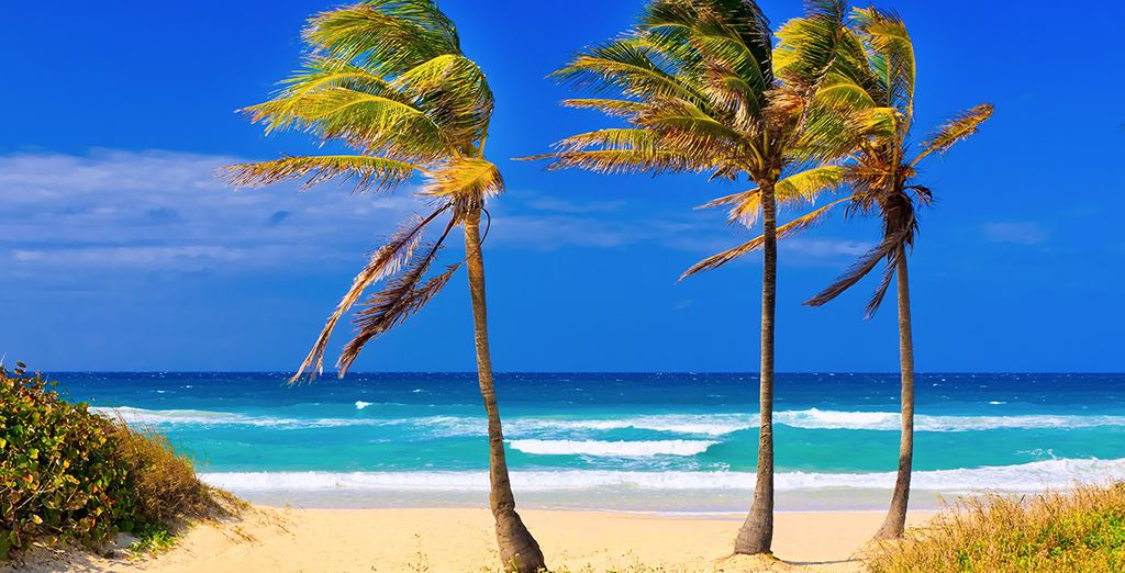 Next we will whisk you away to the beaches of Varadero