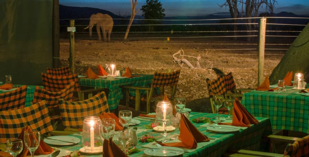 So you won't miss a thing! (pictured: Sentrim Tsavo)