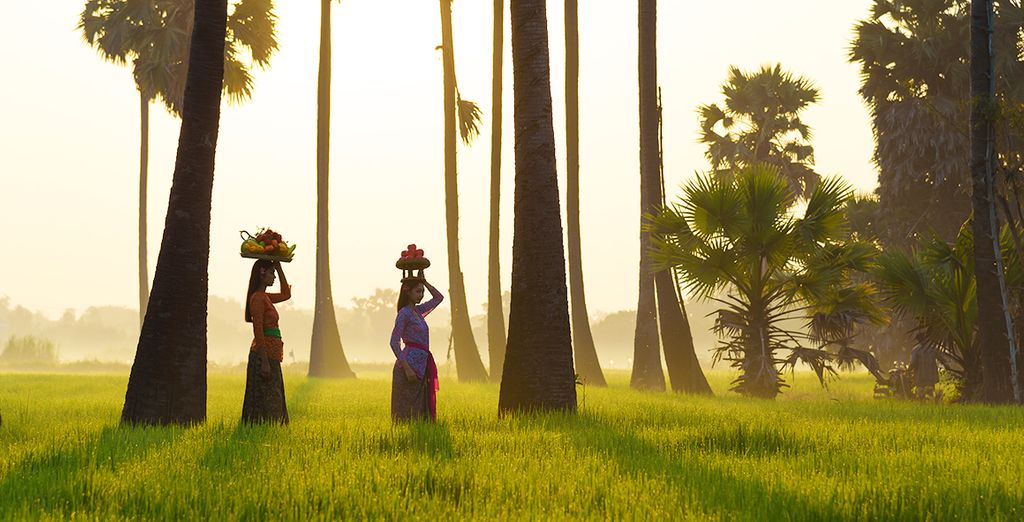 Welcome to Bali - The Island of the Gods...