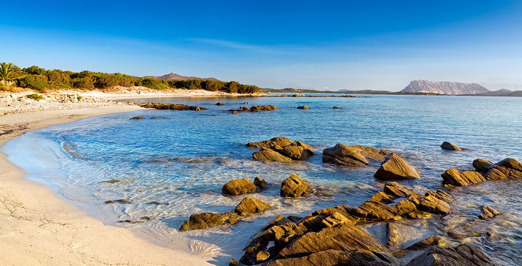 Make your days special with a visit to the glorious beaches