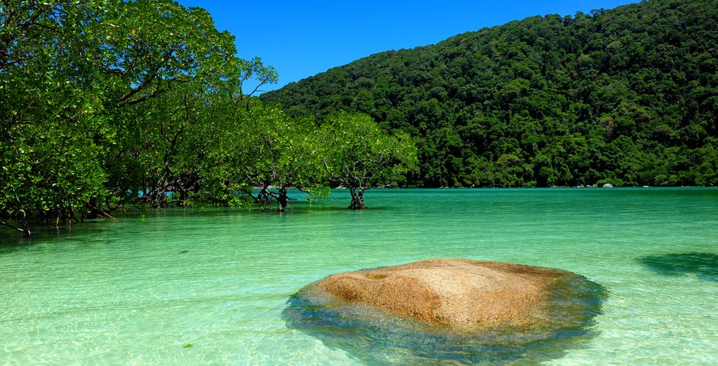 And of course there's the lush island to explore