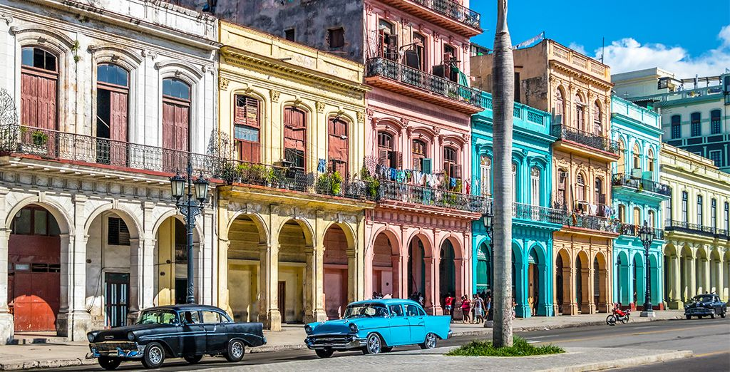 Enjoy Cuba and its culture