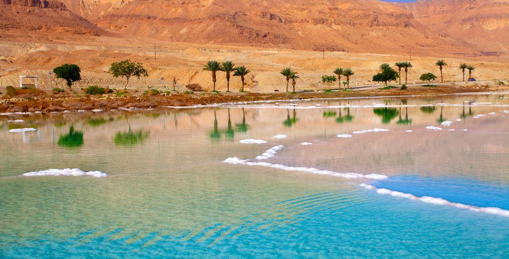 Admire the spectacular Dead Sea