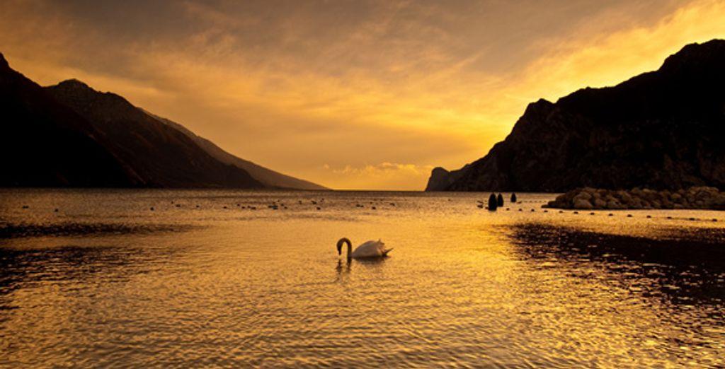 - Parc Hotel Gritti**** - Lake Garda - Italy Lake Garda
