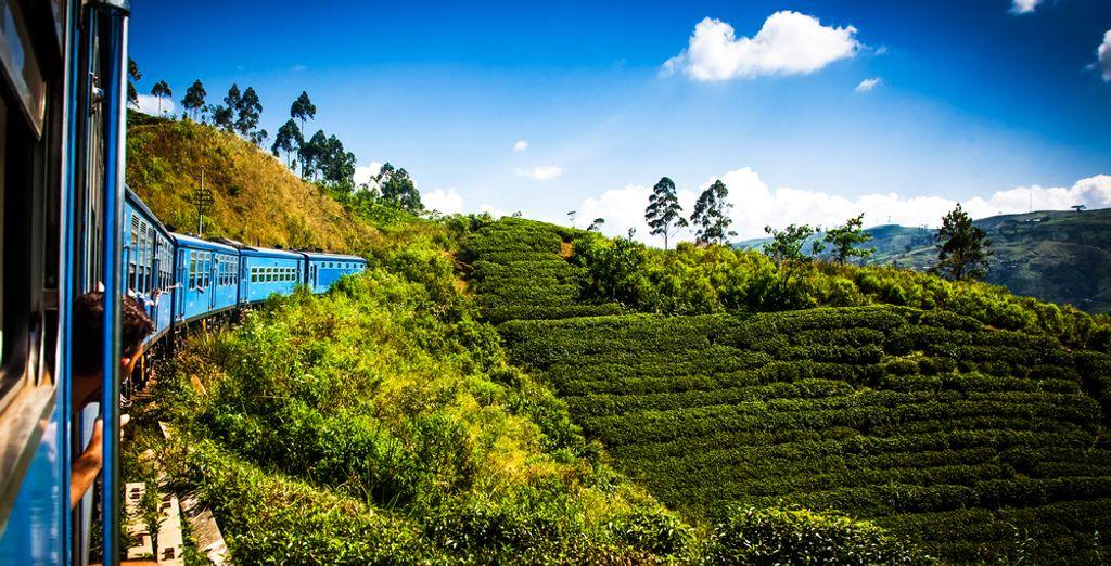Discover Sri Lanka - honeymoon