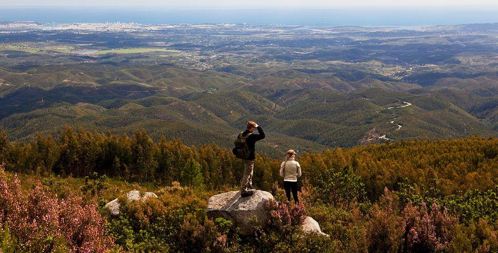 Take a trek in the wonderful surroundings