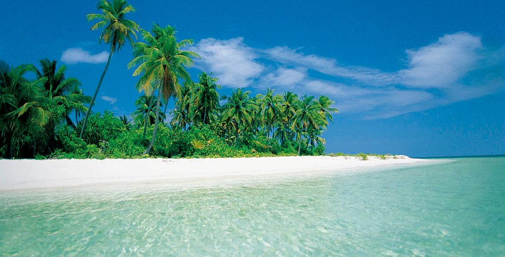 A paradise of white sand and clear sea
