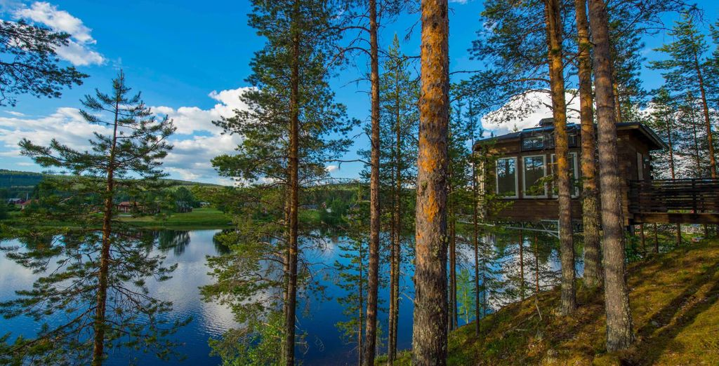 Holidays in Sweden : Umea