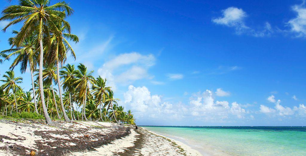 Cayman islands holidays