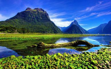 Autotour en Nouvelle-Zélande avec Emirates