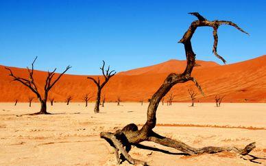 Avventurosa Namibia