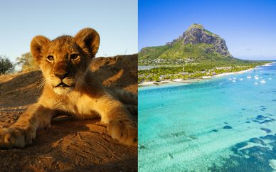 Circuito Big Five in Sudafrica & Hotel Le Méridien Maurice 4*
