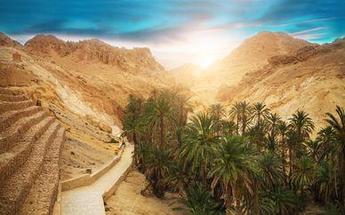 Tunisia tra deserto, oasi, palmeti e laghi salati