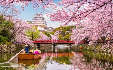 Cultura antica e fascino moderno in tour del Giappone