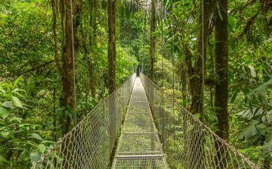Nature Secrets of Costa Rica