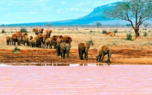 Welkom in Kenia