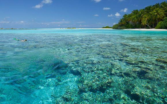 Welkom op...de Malediven