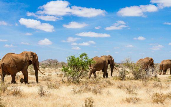 Bei 8 Nächte: 2-tägige Safari