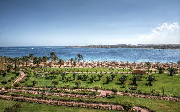 Willkommen in... Hurghada!