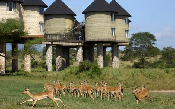 Ihre Hotels während der Safaris