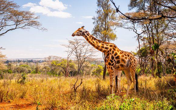 Erleben Sie spannende Safaris