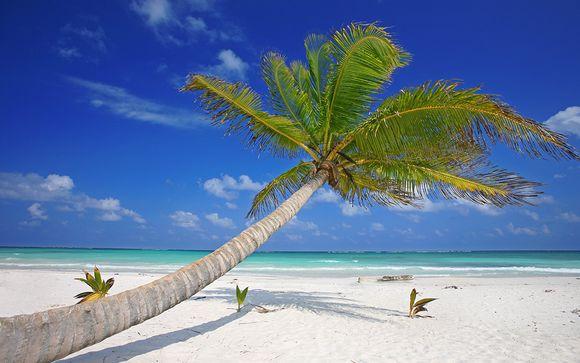 Willkommen in... New York und Cancun!