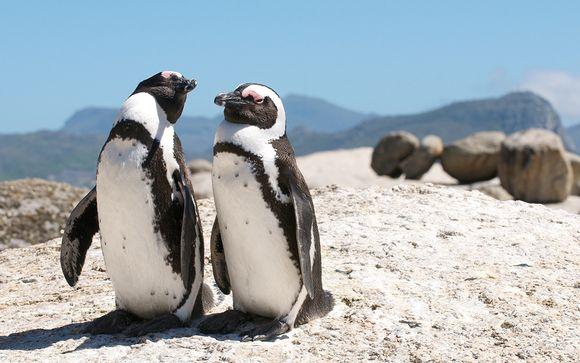 Ihre Rundreise in Südafrika im Überblick