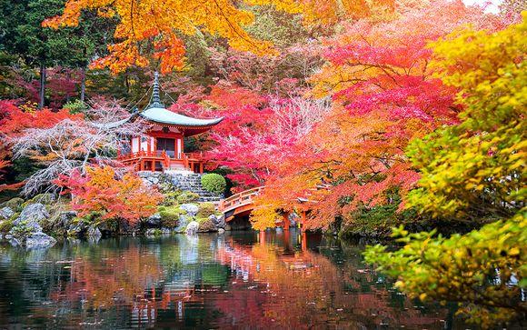 Combinado 4* de Tokio a Kioto