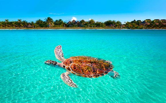 México Cancún - Mystique Blue Boutique Suites desde 388,00 €
