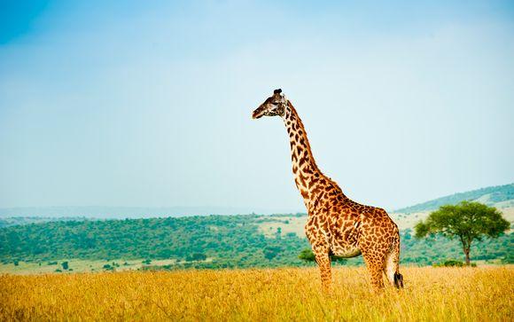 Leopard Beach Resort 4* con safari opcional