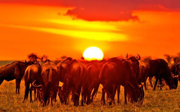 Kenia Diani – Pinewood Beach Resort 4* con Safari desde 1.225,00 ? Diani Kenia en Voyage Prive por 1225.00 EUR€