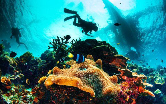 Îles tropicales et nature sauvage